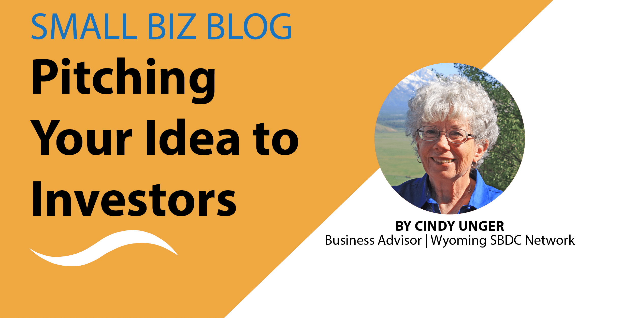 How to pitch an idea to potential investors