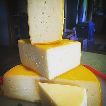 Mmmm - Cheese.jpg