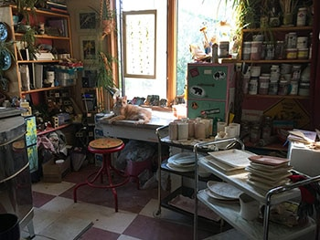 PBD studio and cat that is not allowed...bull in a china shop for web.jpg