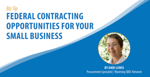 Banner Graphic titled: Federal Contracting Opportunities for Your Small Business.