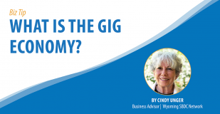 What is the Gig Economy? Biz Tip Banner Graphic