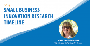 Biz Tip: Small Business Innovation Research (SBIR) Timeline. By Kelly Haigler Cornish, WSSI Manager, Wyoming SBDC Network.