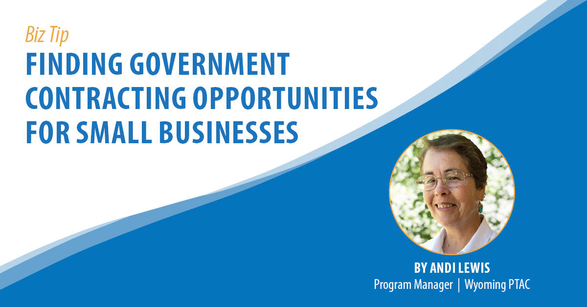 Finding Government Contracting Opportunities