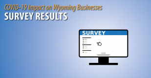 COVID-19 Impact on Wyoming Businesses - Survey Results.