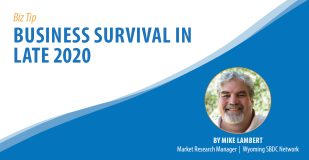 Biz Tip: Business Survival in Late 2020. By Mike Lambert, Market Research Manager, Wyoming SBDC Network.
