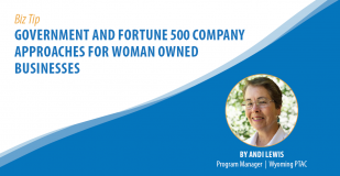 Biz Tip: Government and Fortune 500 Company Approaches for Woman Owned Businesses. By Andi Lewis, Program Manager, Wyoming PTAC.