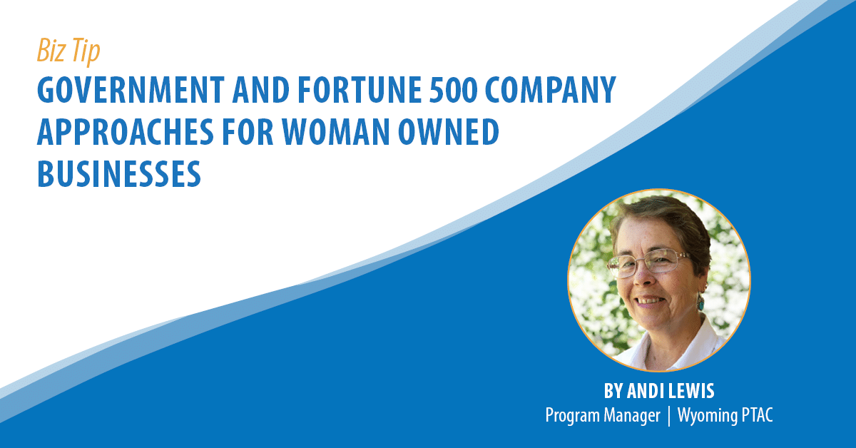Government and Fortune 500 Company Approaches for Woman Owned Businesses